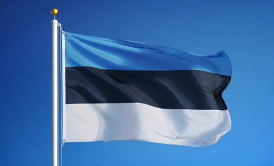 Wywiad z przedstawicielem Organu Nadzorczego z Estonii